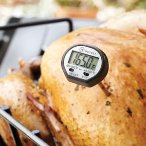 Instant-Read 6-Inch Digital Thermometer image