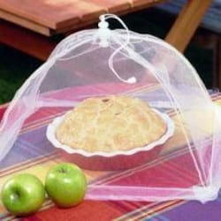 17-Inch Collapsible Mesh Food Tent image