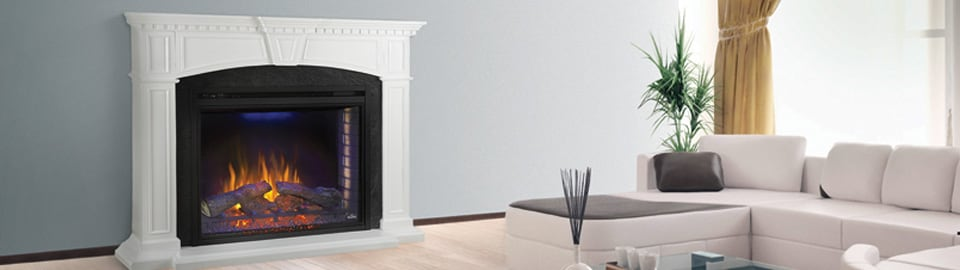 Napoleon Fireplaces and Gas Logs