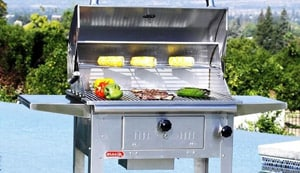 Bull Grills, Outdoor Products & Accessories : BBQ Guys